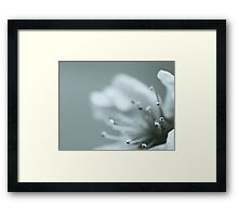 Soft Touch Framed Print