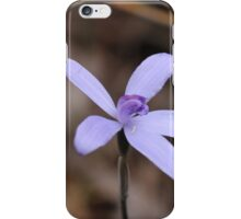 Cyanicula sericea iPhone Case/Skin