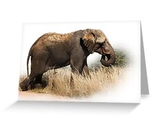 TOOTHLESS ELEPHANT Greeting Card