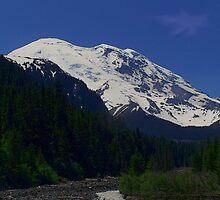 Mt. Rainier by DorotheaK