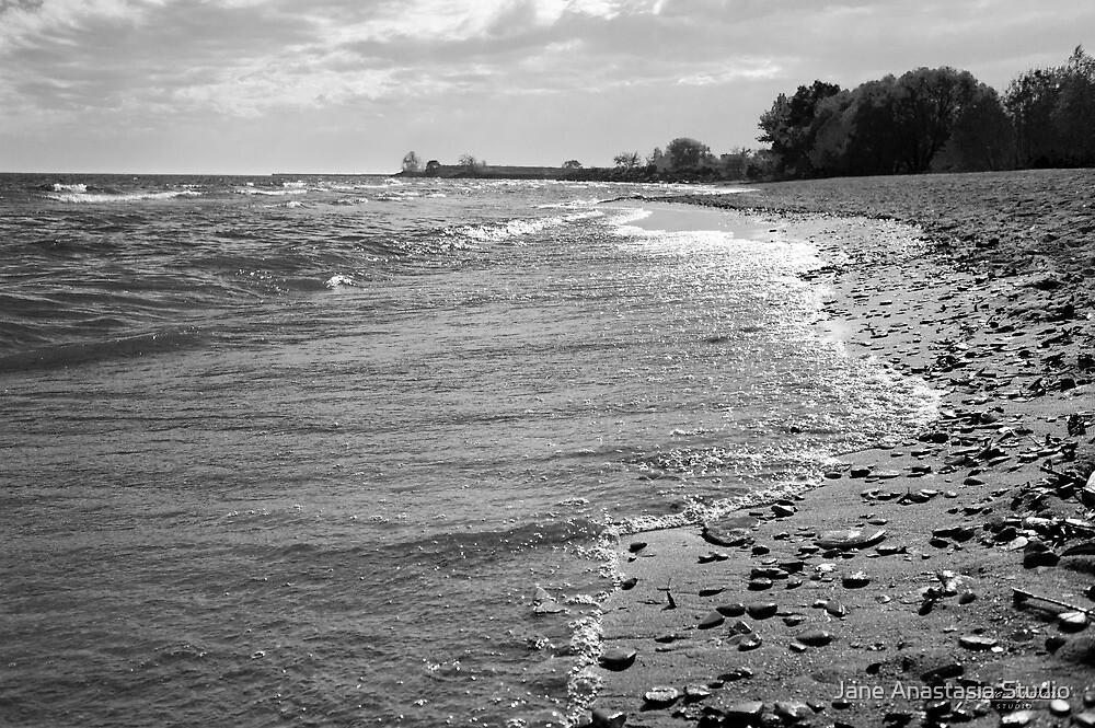 ...by the lake.......... by Jane Anastasia Studio