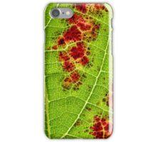 wine leaf macro iPhone Case/Skin