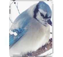 Feeling Blue iPad Case/Skin