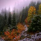 Fall Snow by Charles &amp; Patricia   Harkins ~ Picture Oregon