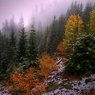 Fall Snow by Charles & Patricia   Harkins ~ Picture Oregon