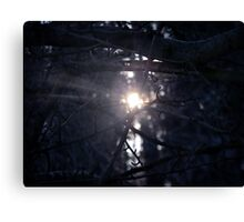 framing branches Canvas Print