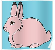 Light Pink Arctic Hare Poster