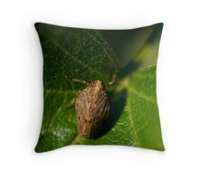 Issus coleoptratus nymph Throw Pillow
