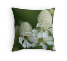 Speckled Bush Cricket immature on Bladder Campion Throw Pillow