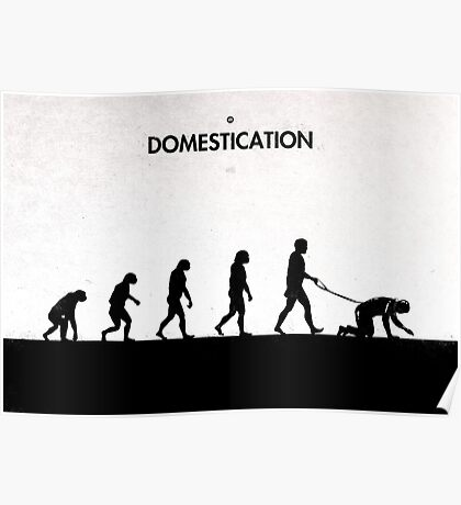 99 Steps of Progress - Domestication Poster