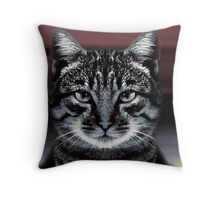 The eyes are mesmeric!!! Throw Pillow
