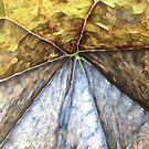Pixelate by RobertCharles