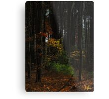 Low key foliage  Metal Print