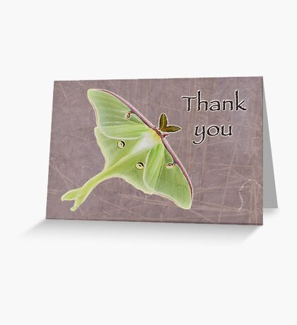 Thank You Greeting Card - Luna Moth Greeting Card