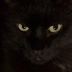 Eight Ball Kitty by BlackTopaz