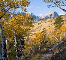 Fall Hike by Eivor Kuchta