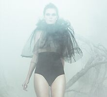 fog by markavgust