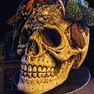 Creepy Skull on a Platter by kkmarais