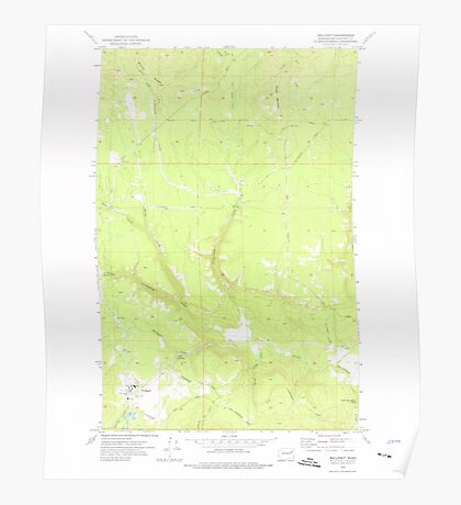 USGS Topo Map Washington State WA Wellpinit 244587 1973 24000 Poster