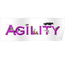 Agility Fun! Poster