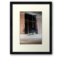 Dax Miller - Front Crook - Photo Sam McGuire Framed Print