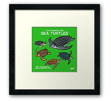 I Am Thankful For Sea Turtles Framed Print