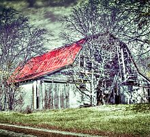 Our family's Barn in Southern Illinois by David Owens