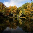 Autumn in Bucklebury by Samantha Higgs