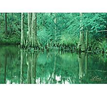 BOLD EMERALD GREEN BAYOU Photographic Print