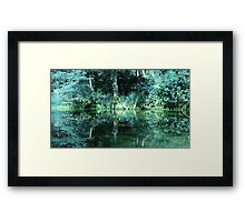 BEAUTIFUL TEXAS BAYOU Framed Print