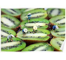 Planting rice on kiwifruit Poster