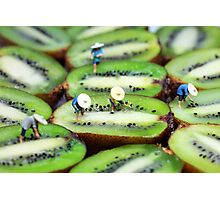 Planting rice on kiwifruit Photographic Print