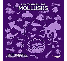 I Am Thankful For Mollusks Photographic Print