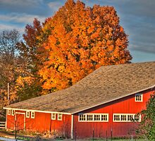 Autumn at the Farm by Thomas Young