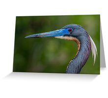 Tricolored Profile  Greeting Card