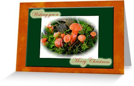 Merry Christmas Greeting Card - Tiny Orange Mushrooms by MotherNature