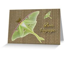Bon Voyage Greeting Card - Luna Moth Greeting Card