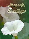 Season's Greetings Card - Bindweed Wildflower by MotherNature