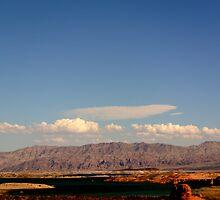 Lake Meadscape by FrankieTease