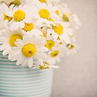 Daisies in a mug by LittleBlueWren