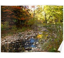 Wilket Creek Fall colours Poster