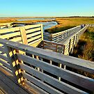 Bodie Island by Robin Lee