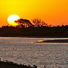 Sunset on Pea Island by Robin Black