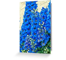 Blue, Blue Delpheniums Greeting Card