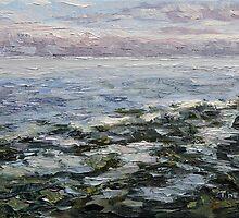 Receding Tide Reef Bay by TerrillWelch