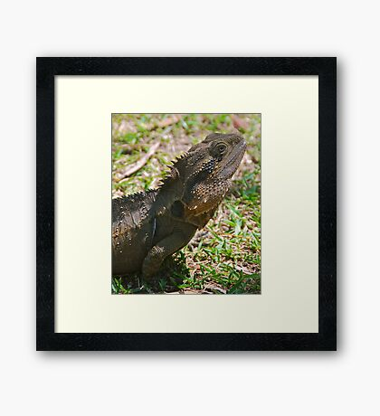 Is This My Best Side ? Framed Print