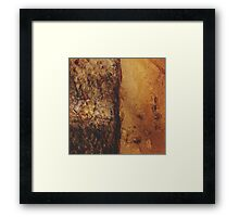 Salmon Oil on Parchment Framed Print