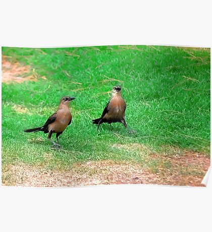 Wacky Grackles Walking in the Park Poster
