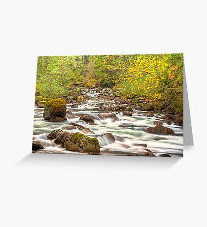 Sauk River from the Mountain Loop Highway Greeting Card