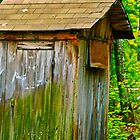 Outhouse - Casco, Maine by FedericoArts